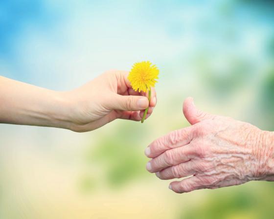 הקהילה הקיבוצית למען הוותיקים